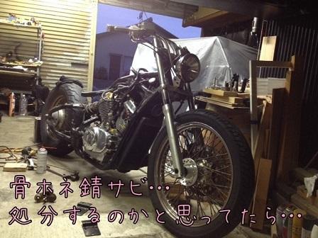 IMG_6916mmmmm.jpg
