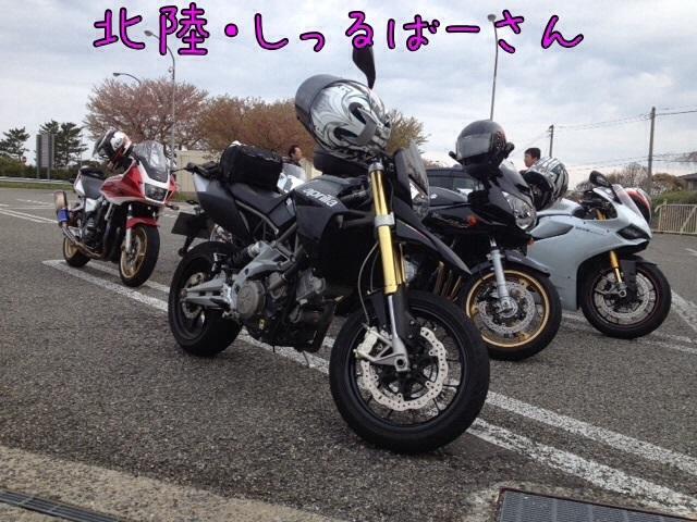 IMG_9132qqq.jpg