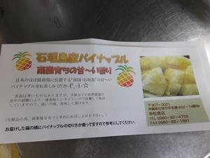 pine-isigaki2-web300.jpg