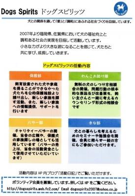 ds_chirashi.jpg