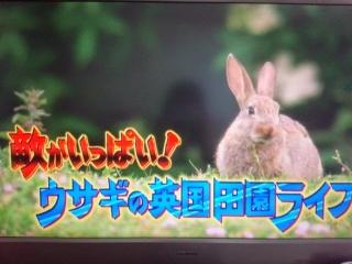 20140529-DVD1.jpg
