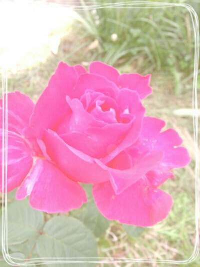 fc2_2014-06-19_00-37-38-478.jpg