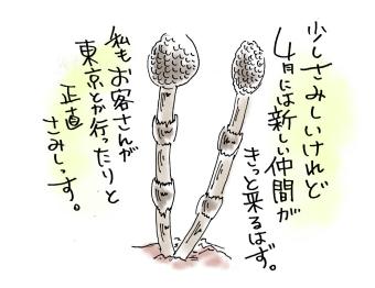 maruma05903.jpg