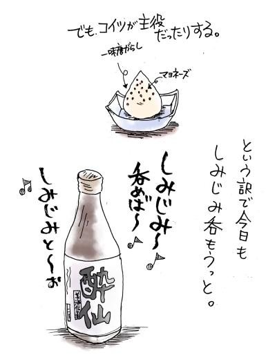 maruma0663.jpg