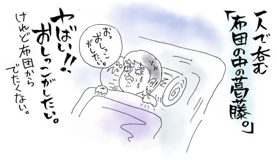 maruma0691.jpg