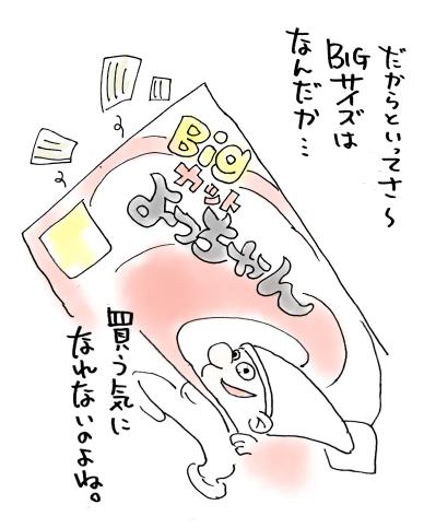 maruma0793.jpg