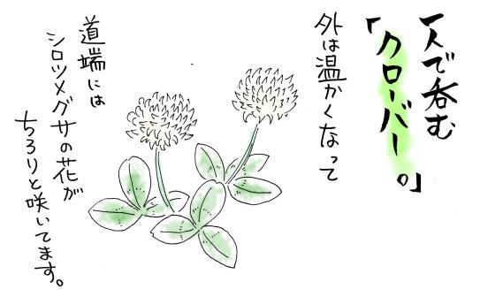 maruma0811.jpg