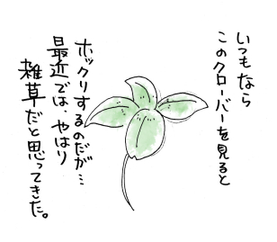maruma0812.jpg