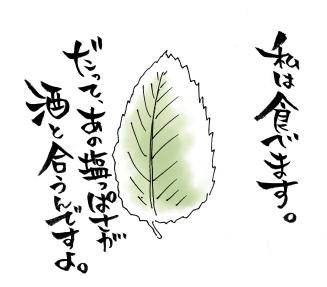 maruma0882.jpg