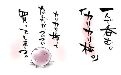 maruma0901.jpg