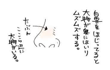 maruma0952.jpg