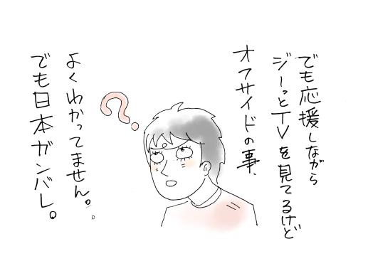 maruma1054.jpg