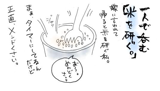 maruma1081.jpg
