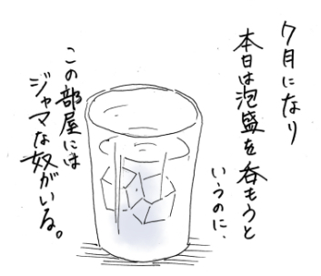 maruma12802.jpg