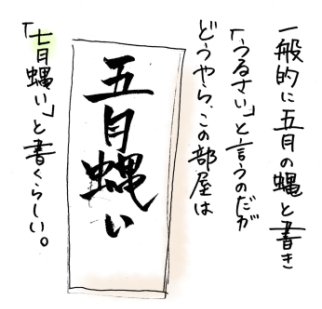 maruma12804.jpg