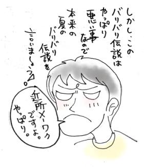 maruma1393.jpg