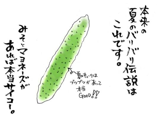 maruma1394.jpg