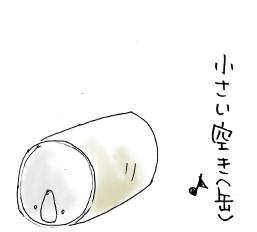 maruma1772.jpg