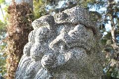 木曾神社狛犬②
