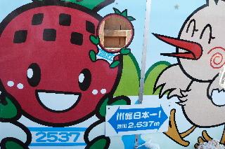 鴻巣キャラクター「ひなちゃん」