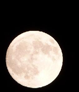 満月に近い月①