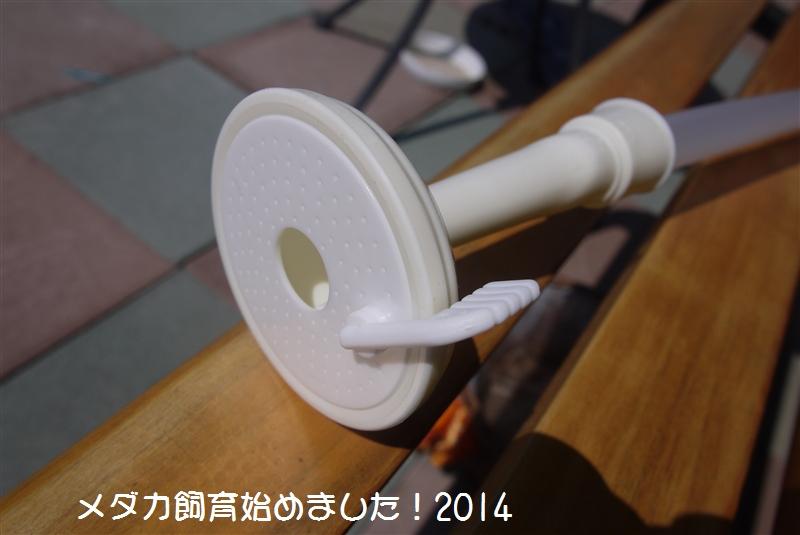 P1060728.jpg