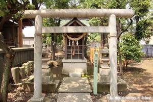 八幡神社(川崎区中島)15