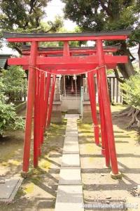 八幡神社(川崎区中島)19