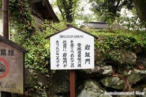 犬山城(愛知県犬山市犬山北古券)9