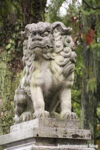 針綱神社(愛知県犬山市犬山北古券)19