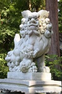 多賀大社(滋賀県犬上郡多賀町大字多賀)59