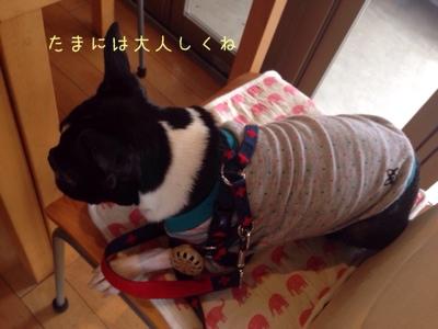 fc2blog_201408110710428c2.jpg