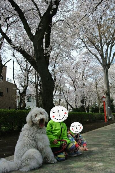 fc2_2014-04-02_19-46-06-315.jpg