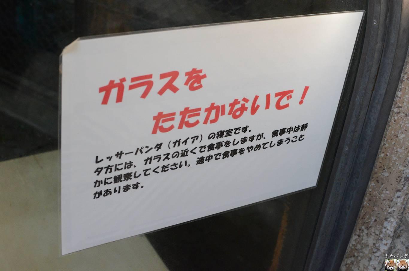 018_2383.jpg