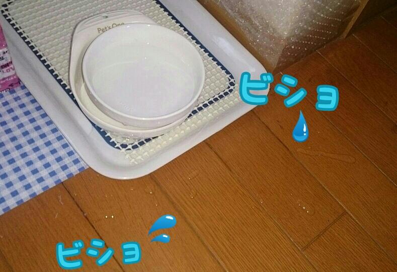 fc2_2014-03-24_09-06-29-363.jpg
