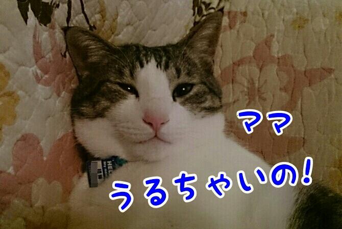 fc2_2014-03-30_22-29-45-335.jpg