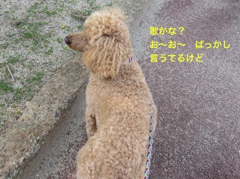 th_IMG_7154-1.jpg