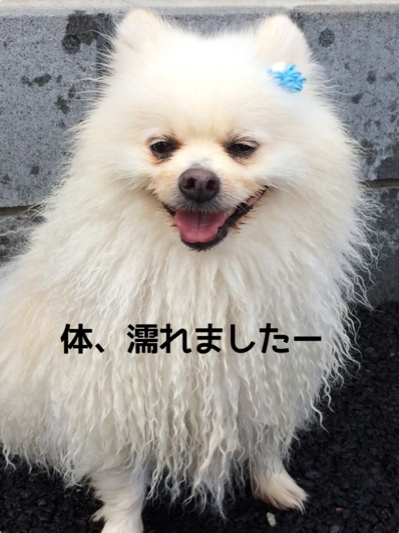 fc2blog_20140718204435586.jpg