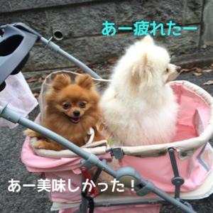 fc2blog_20140725210620452.jpg
