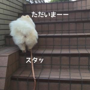fc2blog_201407261810163e3.jpg