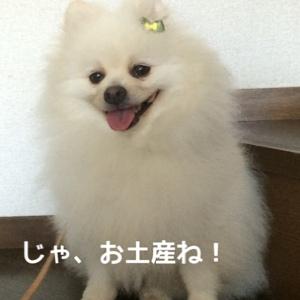 fc2blog_2014080809580212c.jpg