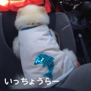 fc2blog_2014082018334588e.jpg