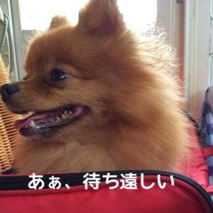 fc2blog_20140914135220d8c.jpg