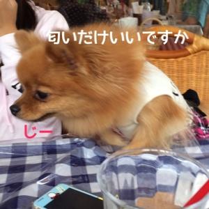 fc2blog_20140914141621508.jpg