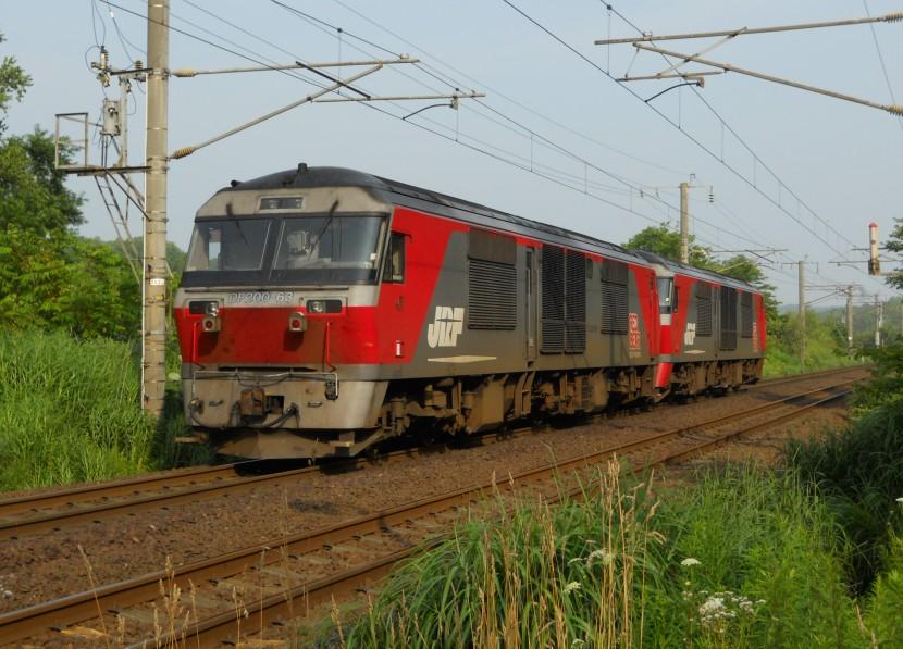 DF63DSCN0806-3.jpg