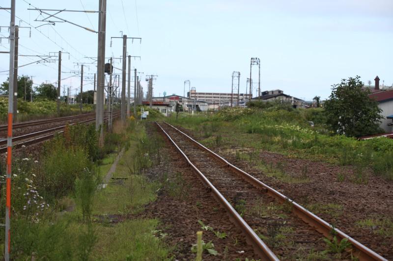 washikiIMG_8396-1.jpg