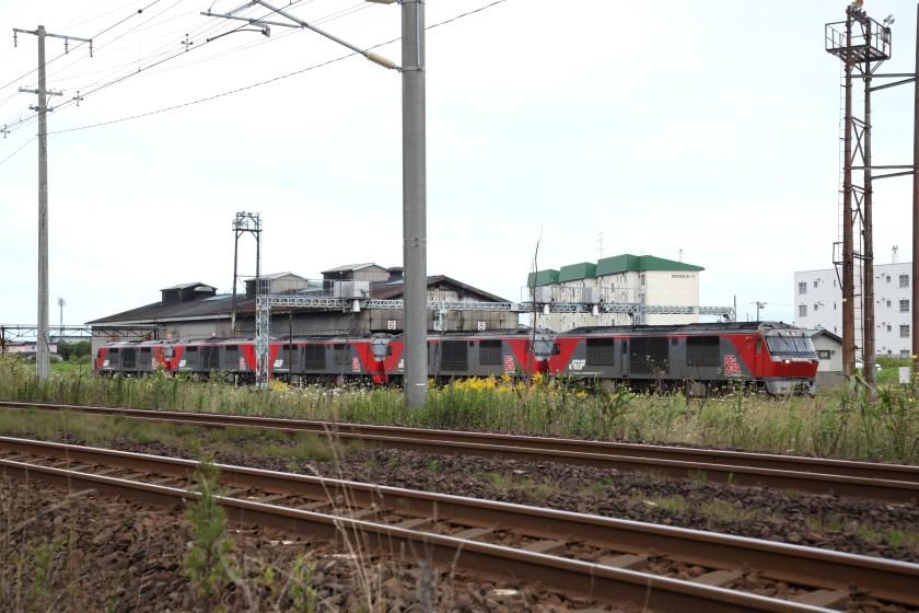 washikiIMG_8413-2.jpg