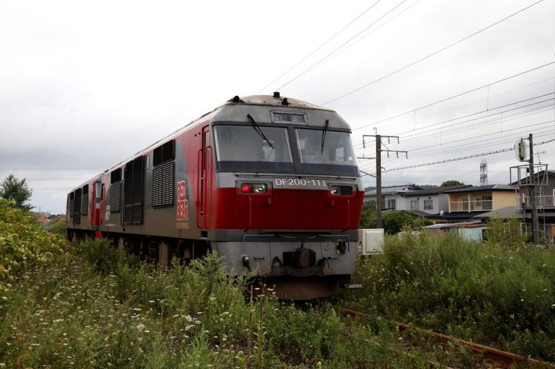 washikiIMG_8464-2.jpg