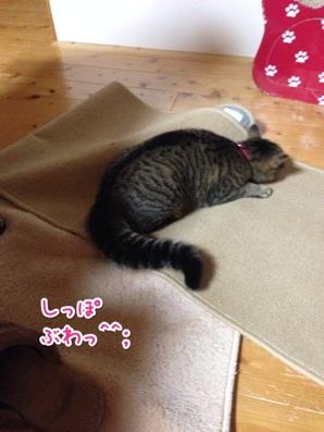 fc2blog_20140327215242c59.jpg