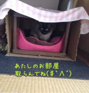 fc2blog_20140330094802196.jpg